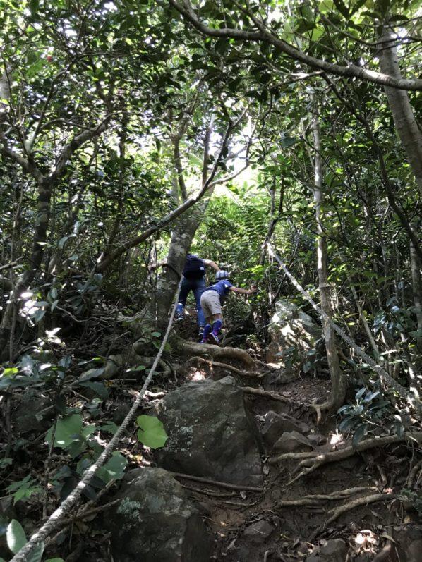 【初登山に最適】3歳から登れる片道30分の野底岳マーぺー登山