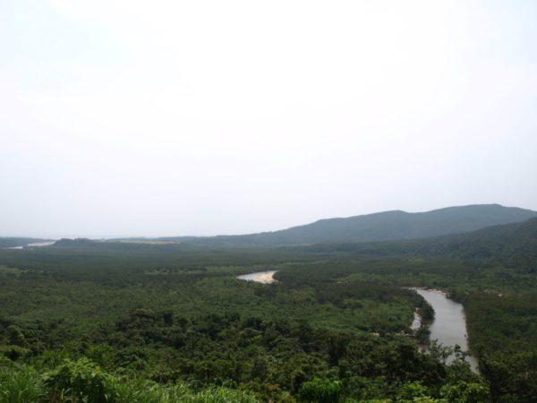 亜熱帯ジャングルの【西表島】子連れ旅でも楽しめる大自然体験